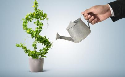 plant-watering-can-dollar-sign-growth-580x358